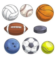 Sport balls set hand drawn color pencil sketch vector