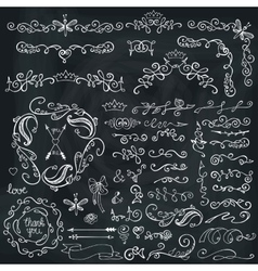 Doodles borderbrushesdecorFloral sketched vector image