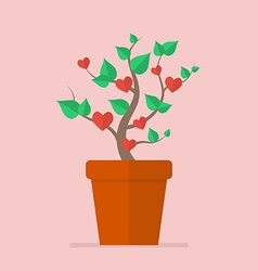 Plant with hearts flat icon vector