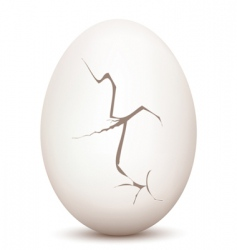 cracked egg vector image vector image
