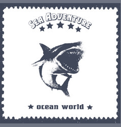 Hand drawn vintage card with a shark and lettering vector