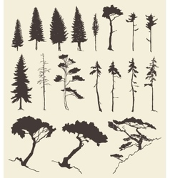 Set of trees vintage hand drawn vector