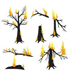 A burning tree forest fire vector