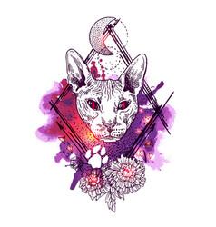 sketch portrait of bald cat vector image
