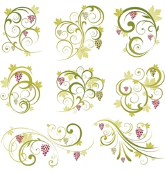 wine design ornament vector image
