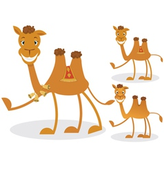 Cartoon camel vector