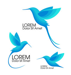 Modern set blue birds colibri in flight trendy vector
