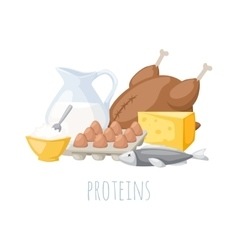 Proteins food vector image