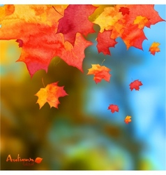 Autumn watercolor leaves on blurred photo vector