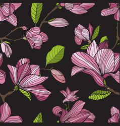 Flowering magnolia pink color on dark background vector