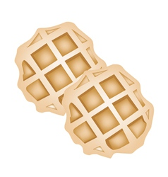 Two baked round waffles on white background vector