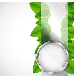 Abstract background with leaves and glass frame vector