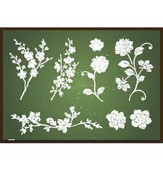 Chalkboard design elements vector image