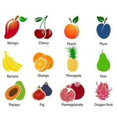 Set of fruit icons with title vector
