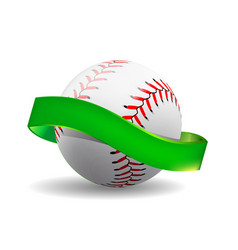 baseball on white background with green vector image vector image