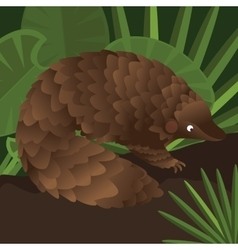 Pangolin between leaf in forest drawing vector
