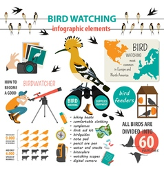 Bird watching infographic template vector