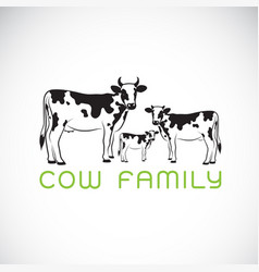 cows family on white background farm animal vector image