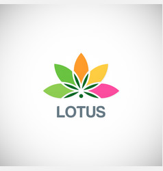 lotus flower beauty logo vector image vector image