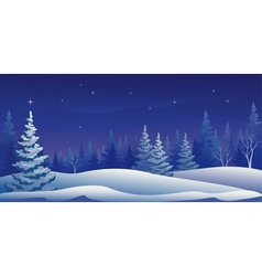 Winter night panoramic vector image vector image