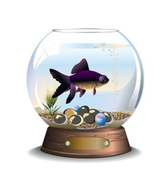 Round aquarium with one fish vector