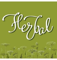 Calligraphy sign herbal 2 vector