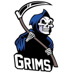 Grim reaper mascot vector