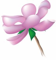 magnolia blossom vector image