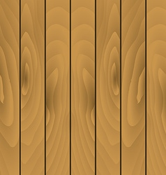 Texture of wooden planks vector