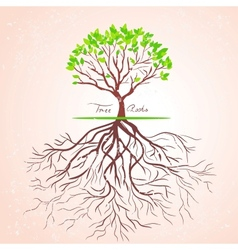 tree roots vector image
