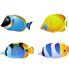 Tropical fish collection vector image