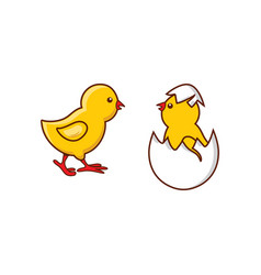 Flat cute chick hatching vector