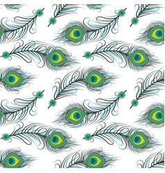 Seamless pattern of peacock feathers vector