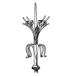 Spanish trellis gate finial peak vintage vector