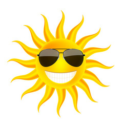 Summer time sun in glasses vector