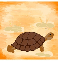grunge background with a turtle vector image