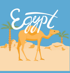 camel in a desery egypt lettering vector image