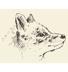 Fox head style vintage drawn sketch vector