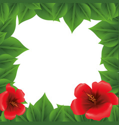 Picture frame leaves nature flowers vector