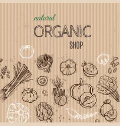 vegetables cardboard concept vector image vector image
