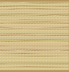 Wicker seamless pattern realistic highly vector