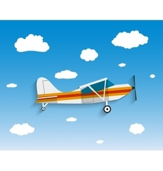 Flight of the plane in sky vector