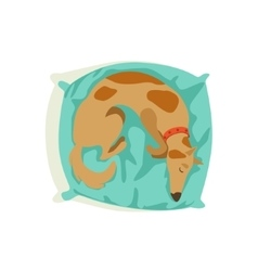 Brown Pet Dog Sleeping On Pillow Animal Emotion vector image vector image