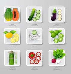 nfographic food vegetables flat lay idea hipster vector image vector image