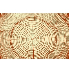 Tree rings saw cut tree trunk background vector image