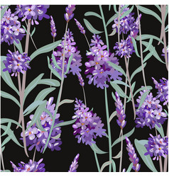 Pattern with lavender hand painting vector