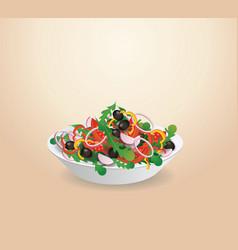plate of vegetable salad lettuce vegetables vector image vector image