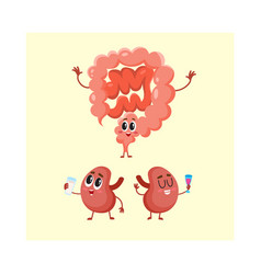 Funny smiling human bowels and kidneys characters vector