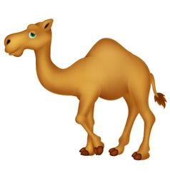 Cute camel cartoon character vector