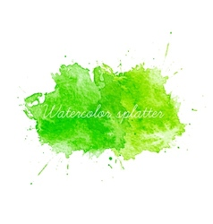 Green watercolor splatters vector